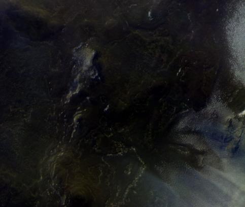 Зонд «ЭкзоМарс-TGO» получил первые цветные фотографии Марса