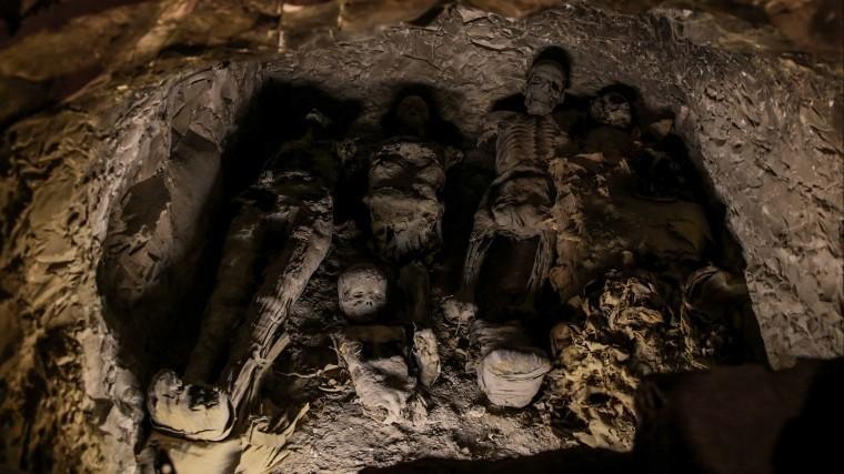 ВПодмосковье найден некрополь сартефактами, которым 4,5 тысячи лет
