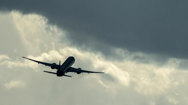 Отморозок или пьяный дебошир— эксперт озахвате самолета Сургут— Москва