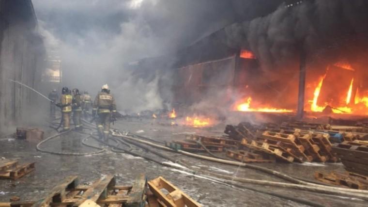Видео: ВНовосибирске вспыхнул продуктовый склад