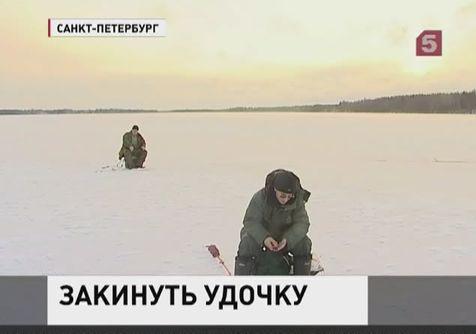 В России пытаются покончить с  браконьерством