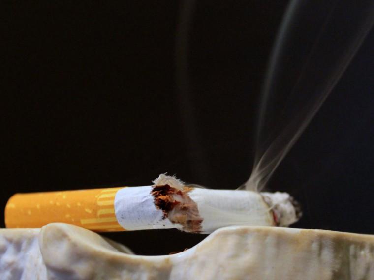 Полуторагодовалый ребенок съел сигарету ибыл госпитализирован из-за этого