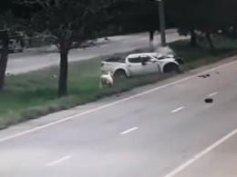 Навидео попала жуткая авария вТаиланде, вкоторой уцелела лишь корова
