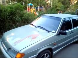 Появились кадры облитых краской автомобилей вИванове