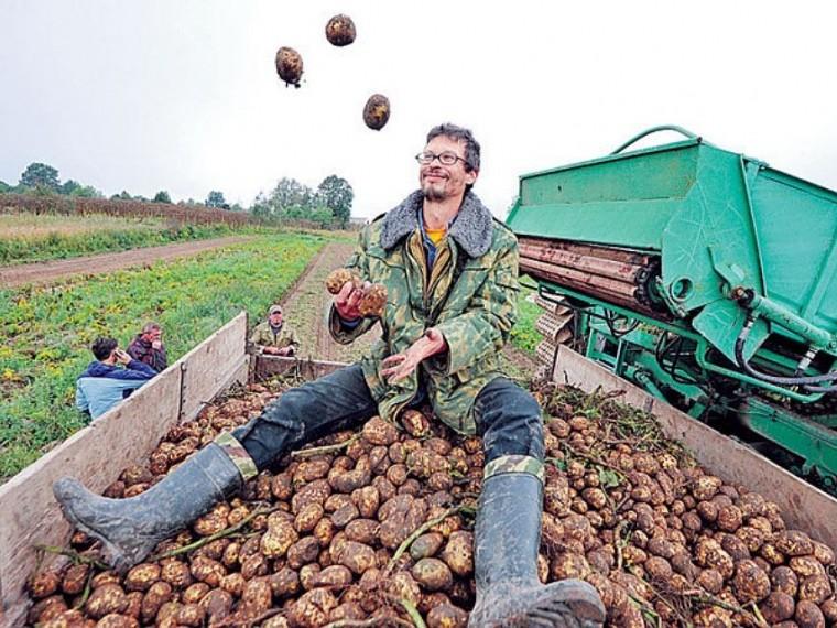 приколы в сельском хозяйстве фото найдутся