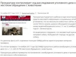 После публикации Пятым каналом материала озеленогорских живодерах возбуждено уголовное дело