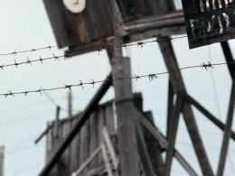 ВПскове хитрые коммерсанты водили экскурсии вподдельный «подвал НКВД»