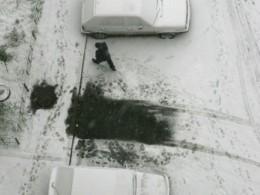 Москвичка узнала, что осталась без авто, через месяц— поштрафам запарковку