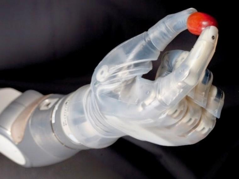 Ученые Курчатовского института создают искусственные органы нового поколения