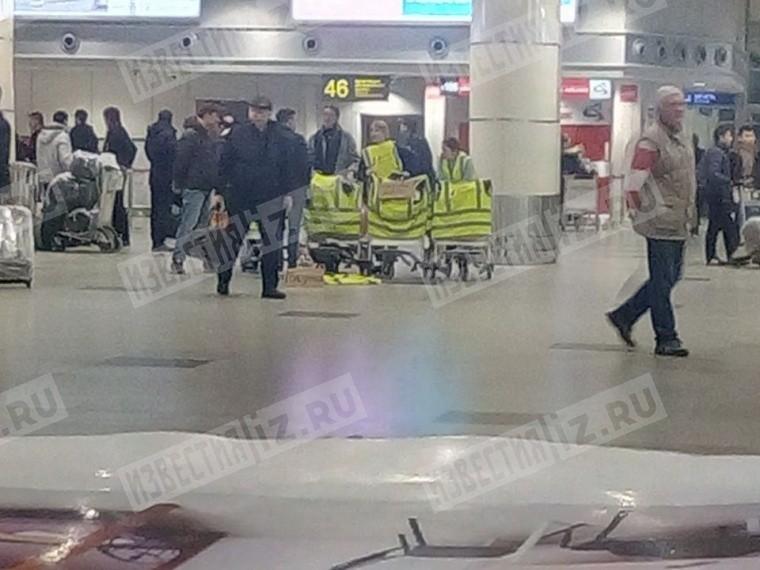 Сотрудники ВИМ-Авиа устроили вДомодедово забастовку