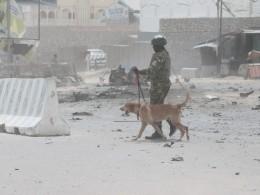 СМИ: Встолице Сомали прогремел мощный взрыв