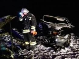 Первые кадры сместа ДТП вКалужской области, вкотором погибли двоечеловек