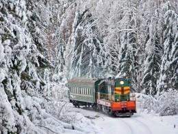 Нажелезнодорожном маршруте Санкт-Петербург— Мурманск добавили остановку ради одной школьницы