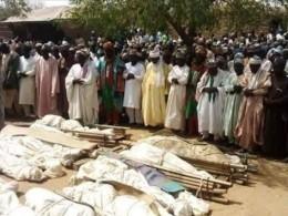 Спор застадо скота привел к36 смертям насевере Нигерии