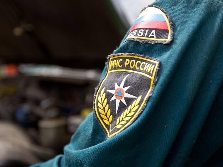 Двое детей погибли при пожаре вПсковской области