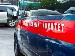 ВМурманской области возбудили уголовное дело после обвала снега наженщину сребенком