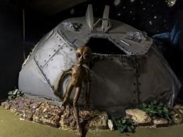 Астрономы объяснили, почему уземлян нет шансов встретиться синопланетянами