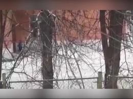 Прокуратура заинтересовалась забытым наморозе ребенком под дверью детского сада вАлександрове