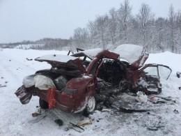 Вмассовом ДТП вМурманской области погибла шестилетняя девочка