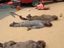 Страшные кадры сместа смертельнойаварии наюге Кувейта, где влобовую столкнулись два автобуса