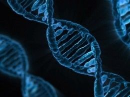 Появился искусственный аналог двойной спирали ДНК