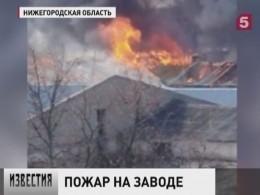 ВНижегородской области потушили крупный пожар