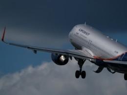 Внебе над Москвой самолёт столкнулся сптицей
