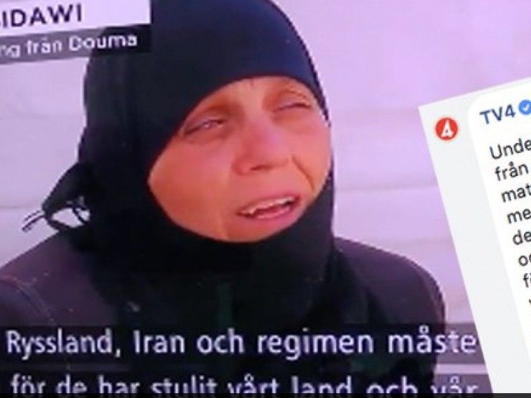 Шведский канал принес извинения за«вольный» перевод слов сирийской женщины