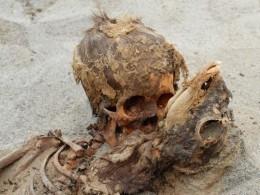 ВПеру обнаружили крупнейшее захоронение принесенных вжертву детей