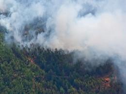 Двое сотрудников лесной охраны погибли при тушении пожаров вБурятии
