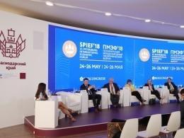 НаПМЭФ подсчитали,сколько Россия заработала натуристах в2017году