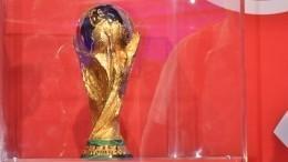 Кубок мира пофутболу торжественно встретиливМоскве