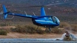«Победилбы кто-то один»— свирепый бегемот едва неутопил вертолет вЮАР
