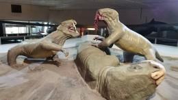 ВКировской области палеонтологи откопали доисторического «горыныча»
