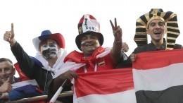 Петербург готовится кпротивостоянию сборной России иЕгипта