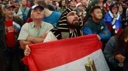 Фан-зона московских болельщиков матча Россия-Египет собрала 60 тысяч человек