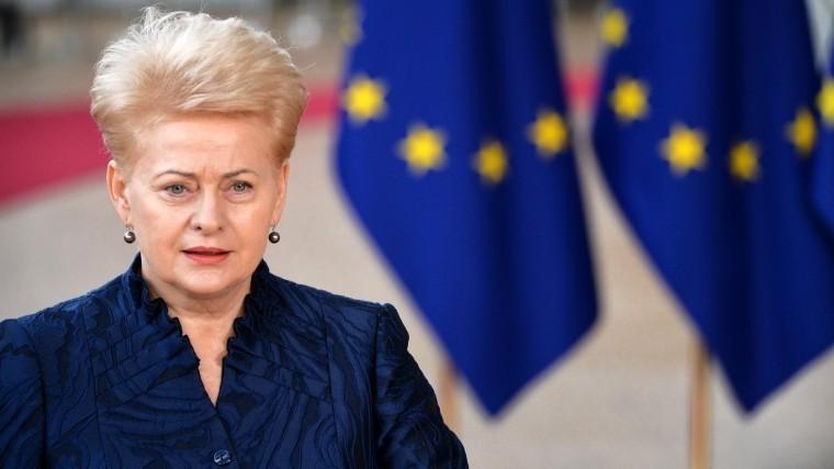 «Сердцем идушой»— президент Литвы готовится защищаться от«вторжения» России