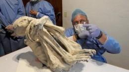 «Главное открытиеXXIвека»— вПеру нашли мумию-инопланетянина