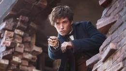 Фанаты Гарри Поттера раскритиковали «Фантастических тварей 2» занепростительныйкиноляп