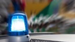 Пьяный водитель наиномарке влетел вгруппу детей под Псковом, погибла девочка
