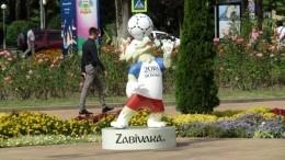 ВПетербурге неизвестные болельщики забрали напамять волка Забиваку