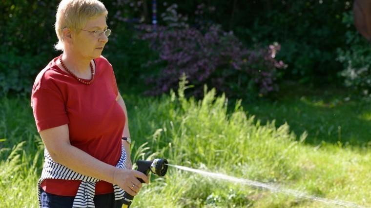 ВАнглии запретили использование шлангов для полива из-за долгой засухи