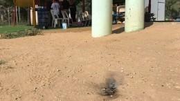 ВИзраиле надетский сад упал горящий воздушный шар