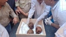 Неожиданно скучно: тайна александрийского саркофага раскрыта