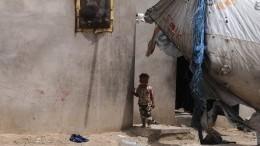 Йеменские хуситы просят помощи уПутина вгражданской войне