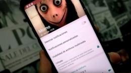 Пользователей Whatsapp пугает «жуткий вирус»