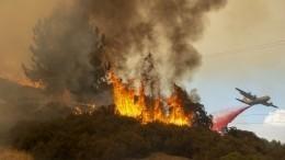 Эксперты подсчитали ущерб отмощных лесных пожаров вКалифорнии