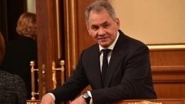 Шойгу: контакты оборонных ведомств России иЯпонии заметно активизировались