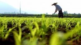 Самый населенный район Китая станет смертельно опасным кконцу века