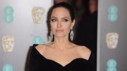 «Слишком много яда»— адвокат Джоли отказалась сней работать